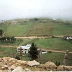 HIRSAVA (2)