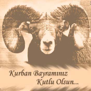 kurban1dvzu5bd1